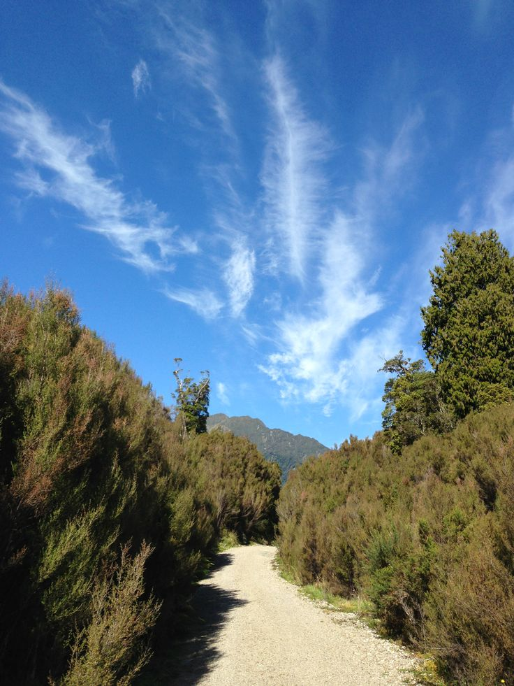 The new West Coast cycle Trail, south of Kumara