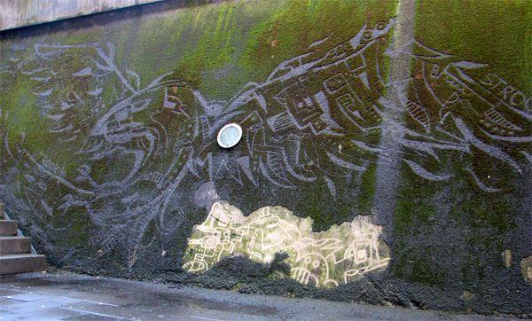 Moss Graffiti by Strook.