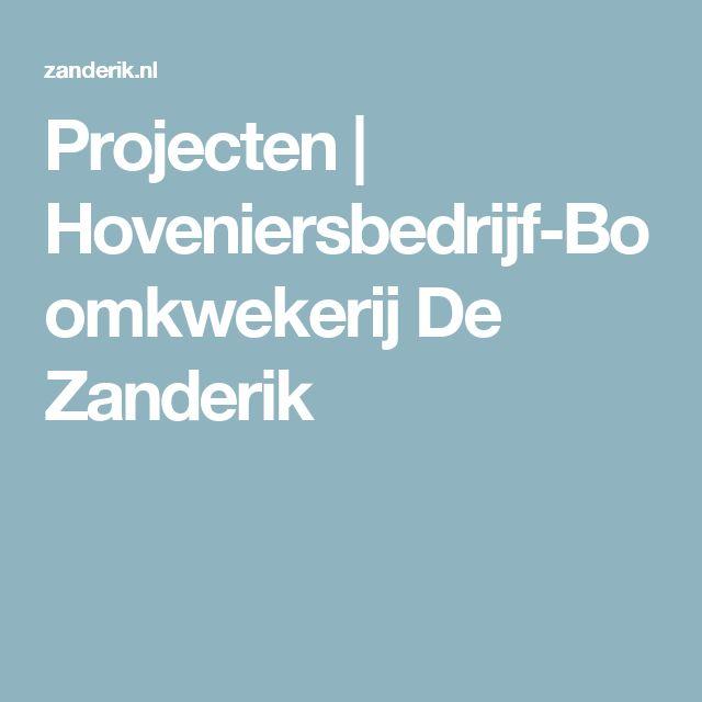 Projecten   Hoveniersbedrijf-Boomkwekerij De Zanderik