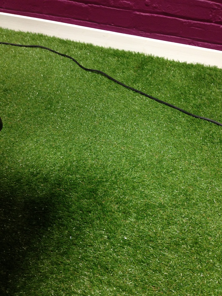 AstroTurf carpet in the office of fatBuzz.