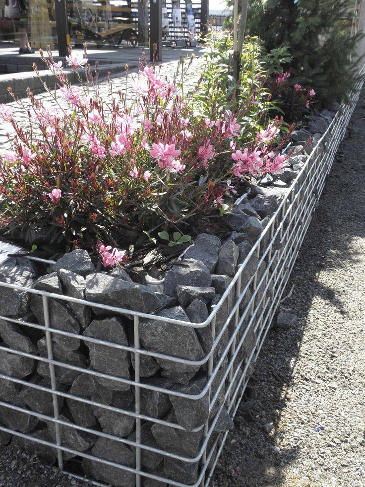 Myös kivikori voi toimia istutusaltaana.