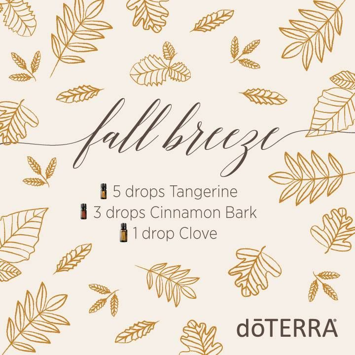 fall breeze essential oil diffuser blend with tangerine, cinnamon, and clove-- this smells amazing!
