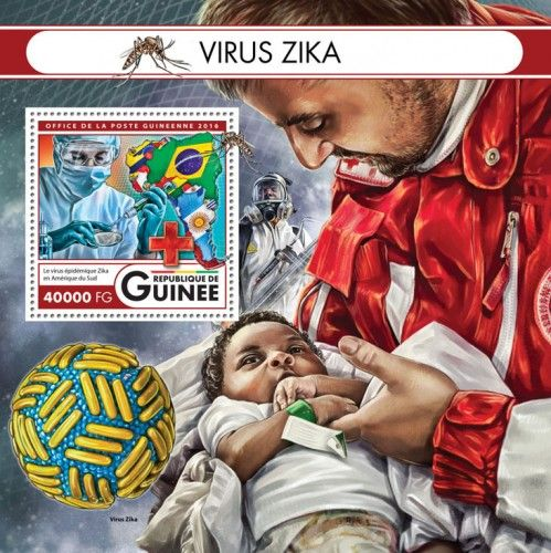 GU16425b Zika virus (Zika virus epidemic in South America)