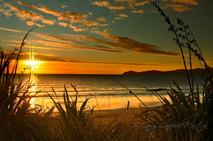 new zealand nature photography - Google Search