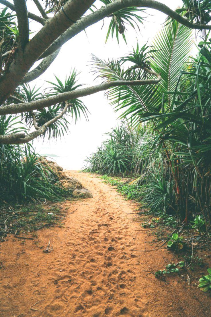 Beruwala und Bentota erkunden, Sri Lanka #VisitSriLanka – #Bentota #Beruwala #erkunden #Lanka