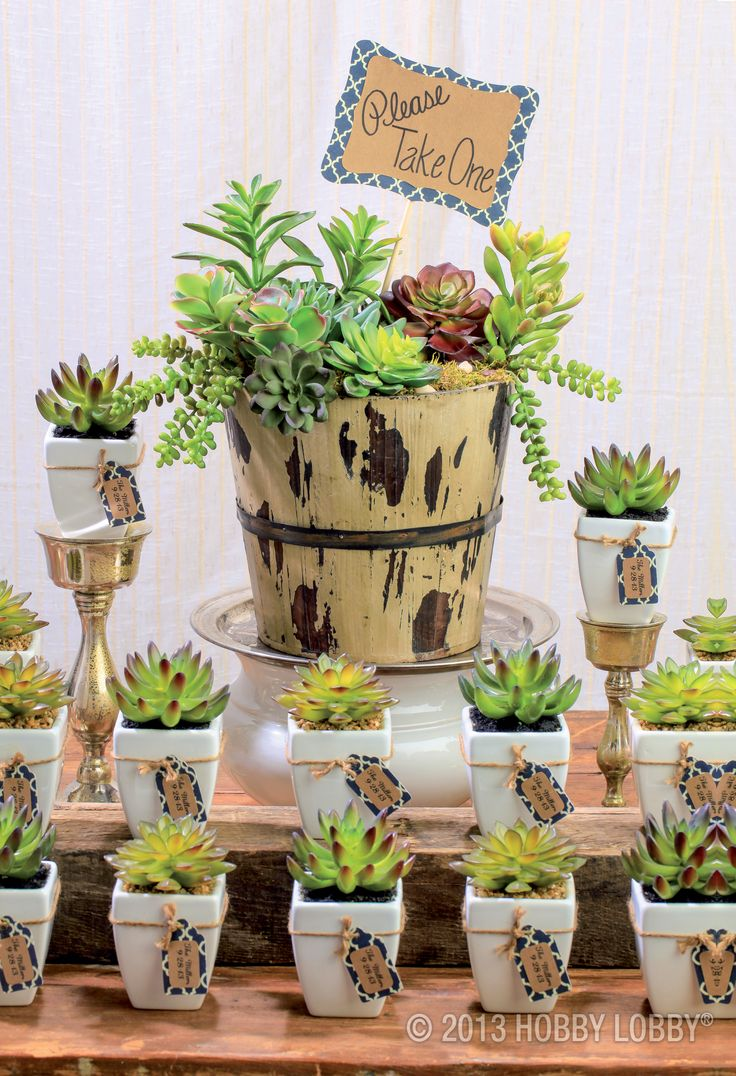 Going green? We suggest starting with trendy, easy-to-arrange succulents. Look inside for our fresh-as-it-gets projects and design ideas.