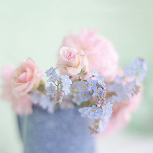 Pastel Dreams Floral Pink