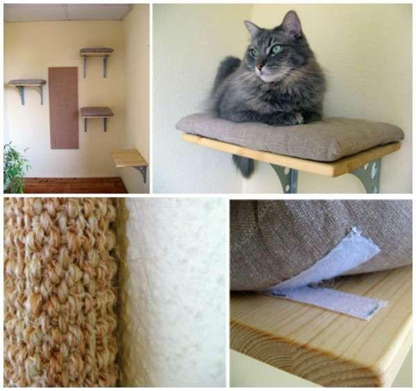 Etagères pour chat avec coussins attachés avec des Velcos
