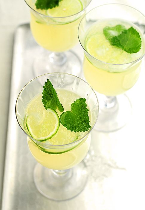 Honey Lemon Balm Spritzer