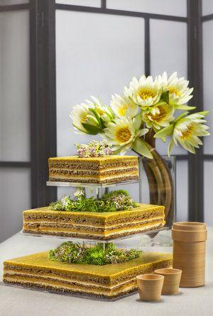 Pistachio Lemon Zen Cake