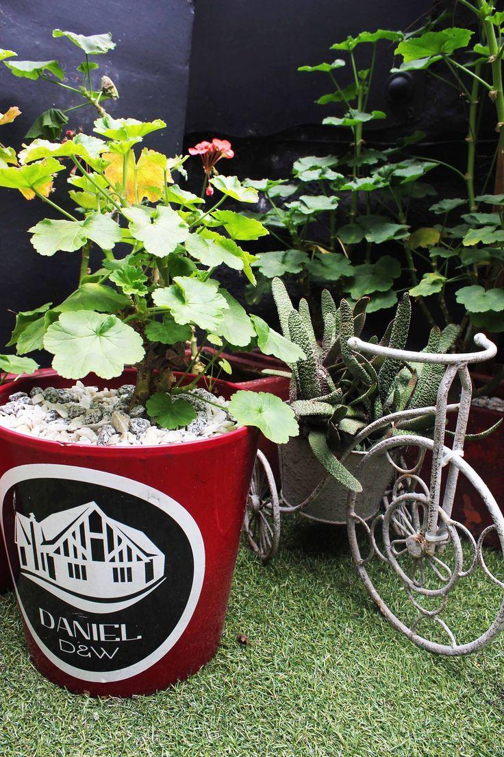 Nuestro jardin este domingo... Los esperamos! Reservas: 2493404 | Calle 73 # 9-70 | www.daniel.co.com