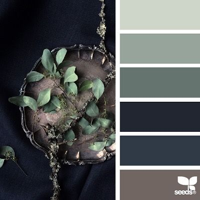 today's inspiration image for { still tones } is by @diana_lovring ... i was thrilled to see Di's photo in SeedsColor because ... a) i *love* inky blue (my favorite color) ... & b) i'm all about eucalyptus tones for 2016 ... blues, browns, warm & cool grays, pasteled neutrals are still sure / relevant colors (note ... not baby blanket pastels that are getting a lot of buzz from the yearly marketing color announcements ~ i mean minted, fogged, and mauved sophisticated tones with a whisper of…