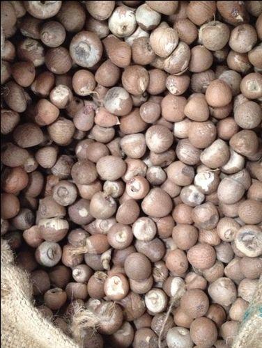 Dried Split / Whole Mature Betel Nut / Areca Nuts
