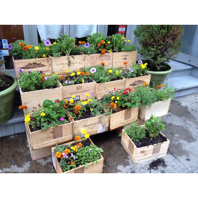 Garden Boxes Ideas raised garden boxes idea Wine Box Garden I Love The Tiered Effect