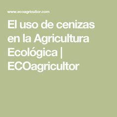 El uso de cenizas en la Agricultura Ecológica   ECOagricultor