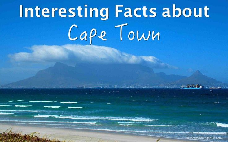 Interesting Facts about Cape Town South Africa