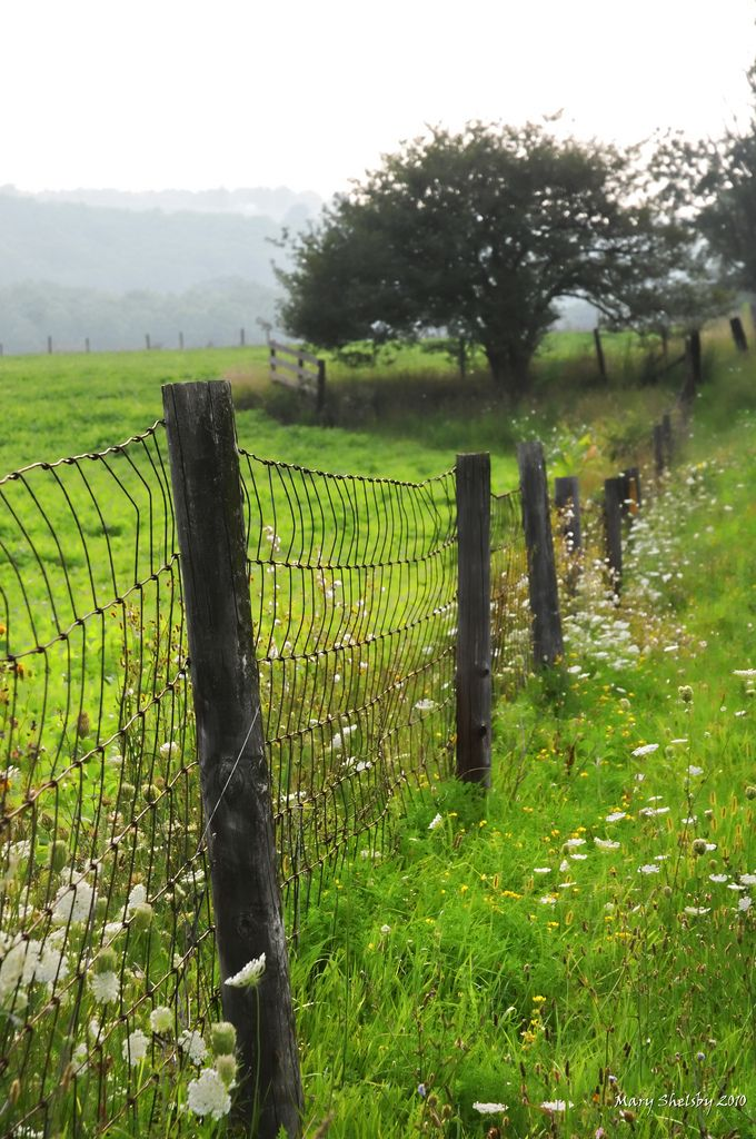 https://flic.kr/p/8pVpsH | Country Fence | Happy Fence Friday.