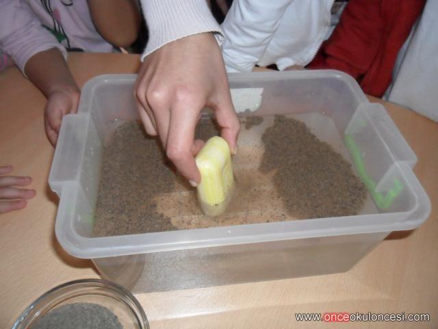 MİKROPLARLA İLGİLİ DENEY  Deney malzemeleri: Derin bir kap, su, bir kalıp sabun ve karabiber.  Deneyin yapılışı: Bu deneyde karabiber mikropları temsil etmektedir. Kabın yarısına kadar su konur. Suyun içine biraz karabiber eklenir. Kalıp sabun, dik bir şekilde suyun ortasına batırılır. Karabiberlerin sabundan uzaklaştığı gözlemlenir.