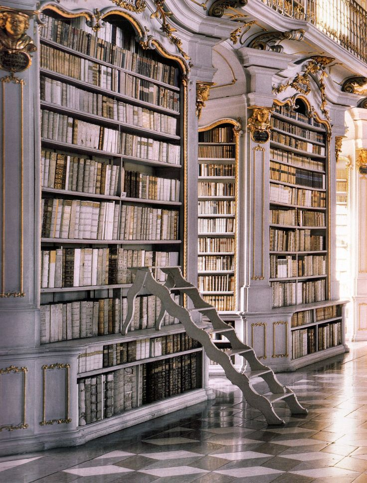This is my dream!  Always wanted to be like Belle in the Beauty and the Beast, wheeling around on a tall ladder from book shelf to book shelf!