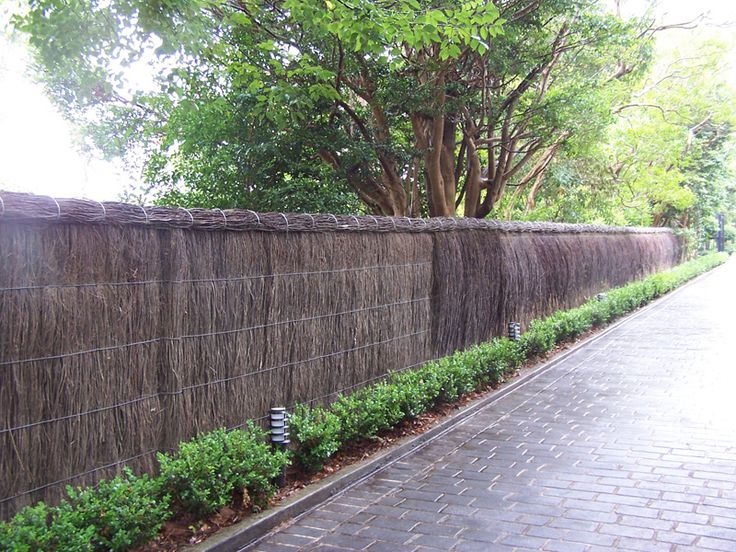 60 Best Brushwood Fencing Panels Images On Pinterest Fencing Trellis Fence And Fences