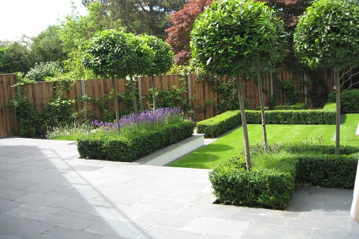topiary and box hedging