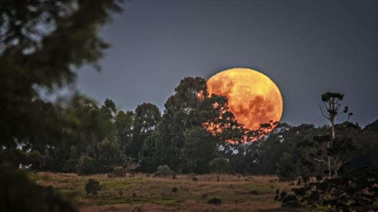 Kingaroy Queensland, Australia