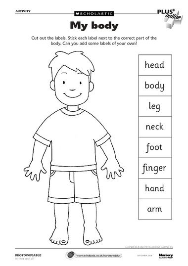 Body Parts worksheet // Ficha de partes del cuerpo #english #body #vocabulary