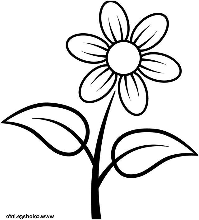 12 Aimable Coloriage Fleur Photos Dessin De Fleur Simple Dessin
