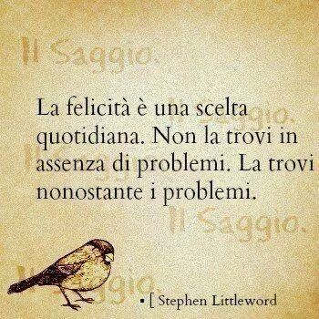 La felicità è una scelta quotidiana. Non la trovi in assenza di problemi. La trovi nonostrate i problemi.