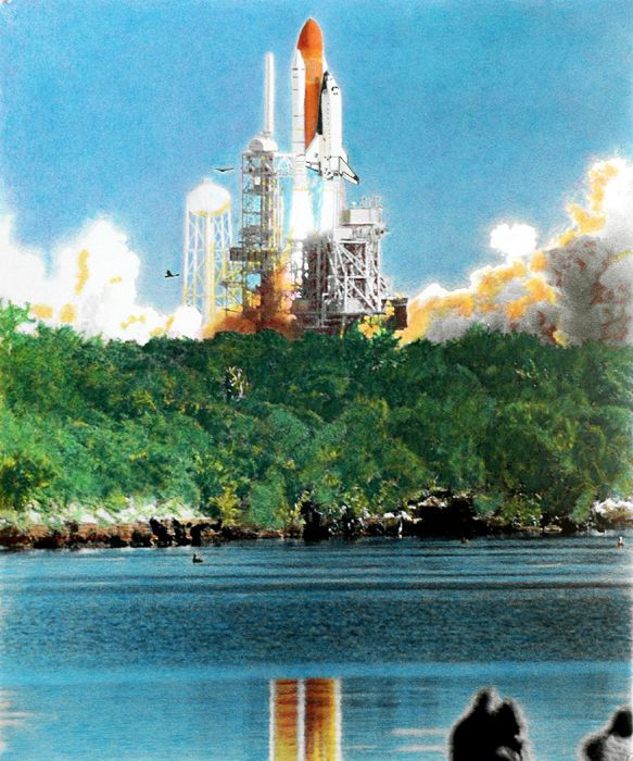"""Lloyd Behrendt recreated Columbia's STS-107 launch in this work, titled """"Sacriflight."""""""