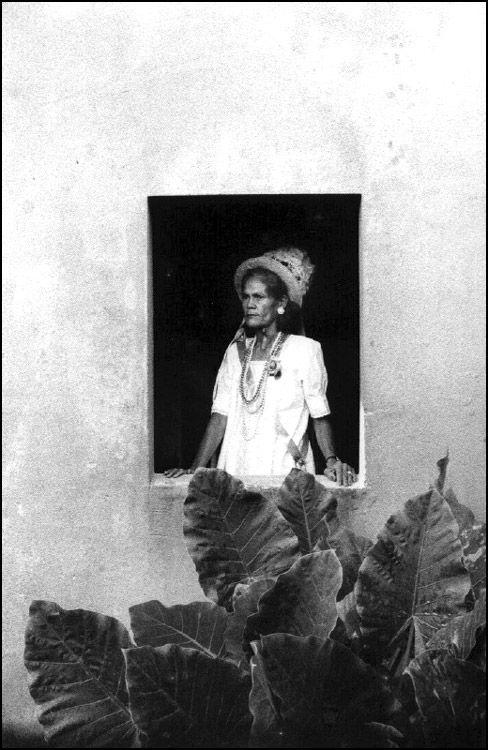 Pedro Martinelli - From: Mulheres da Amazonia. Editora: Jaraqui, 2004. S)