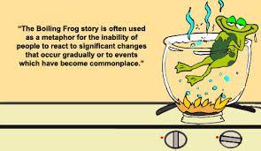 Image result for boiling frog story