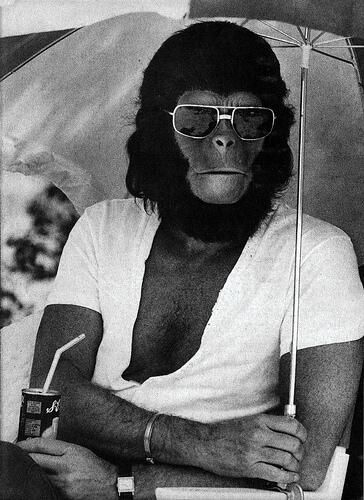 «...Io mi sentii una scimmia.»  «Una scimmia?» Disse sorpresa.  «Una persona insensibile.» - (Un tipo molto calmo e la sua ragazza un po' nervosa) #romanzo