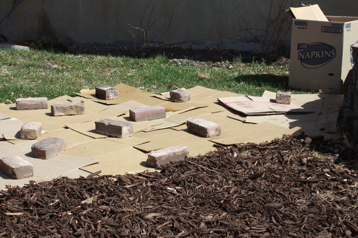 Lay Interlocked Cardboard Boxes On Your Grass And Spread