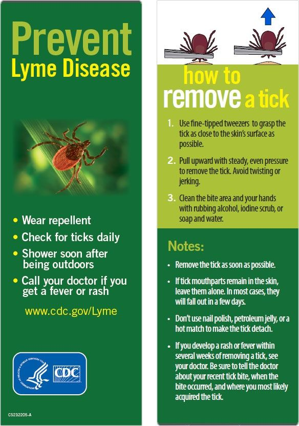 19 Best Images About Prevent Lyme Disease On Pinterest