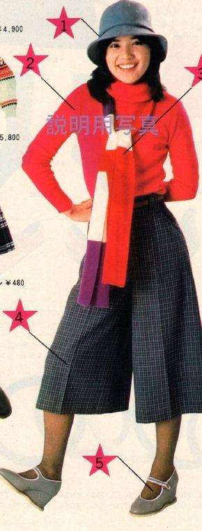 冬の桜田淳子さん(赤の淳子さん)その2:桜田淳子 グッドバイハッピーデイズ:So-netブログ