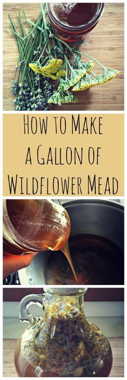 How to Make Wildflower Mead~ A one gallon mead recipe with flowers from your yard! www.growforagecookferment.com