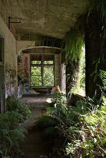 Photo by Far Enough, 2011 Jacksonville, Florida School 4 was closed in 1950's and has been left to nature.  Really beautiful building so sad.
