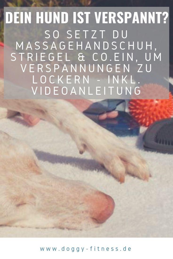 Schmerzen lindern und entspannen mit Igelball, Bürste & Co. (incl. Video)