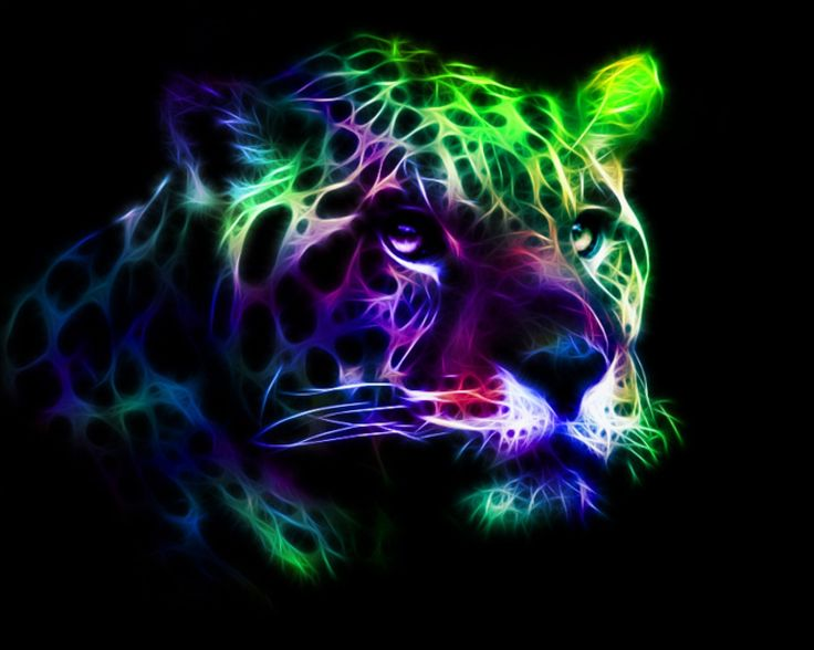 colorful leopard backgrounds artistic - photo #27