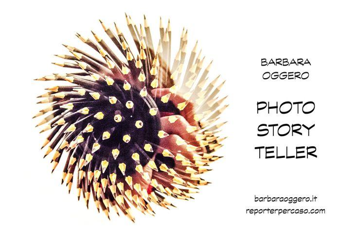 LAVORARE ONLINE E' POSSIBILE? LEGGI L'INTERVISTA A BARBARA OGGERO!