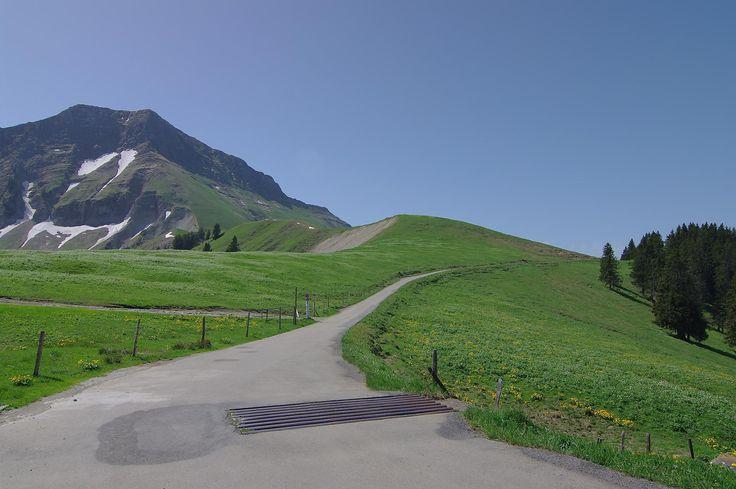Randonnée à la Dent de Lys par Joux Verte, le col de Lys et col du Vanil Blanc  La Dent de Lys est un sommet qui se mérite, l'ascension du sommet après le col de la Dent de Lys est alpin avec plusieurs passages pentus où il faut s'aider des mains. Des chaines sont installés pour en faciliterl'accès Je suis redescendu directement sous le sommet dans le flanc O, en hors piste, qui est plus tranquille.  https://www.transpiree.com/randonnee/col_de_lys_vanil_blanc/
