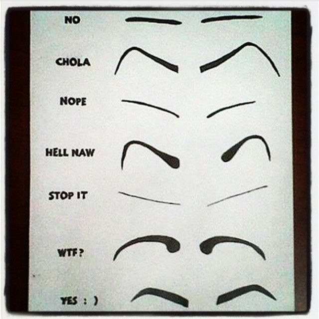 Thick Eyebrow Shapes Chart 16 best images about h...