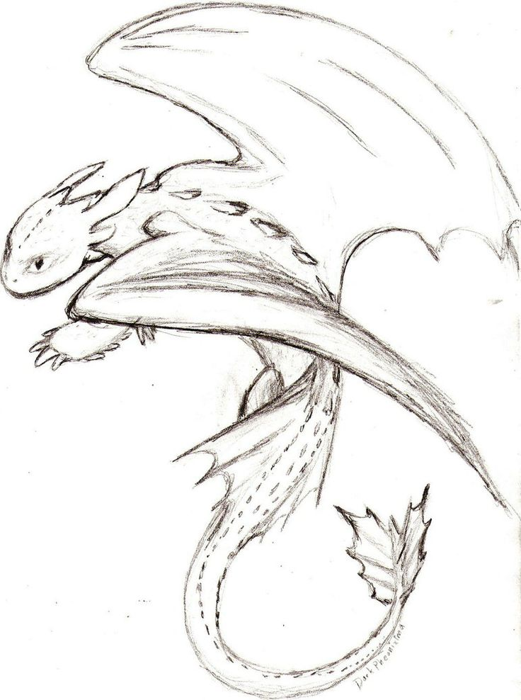 65 Best Images About Dragons