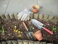Schnellstarter zum Aussäen im #Mai: #Ringelblume, #Kornrade, #Sonnenhut (Rudbeckia hirta), #Jungfer im Grünen (Nigella -blüht 10 Wochen nach der Aussaat), #Sommermohn, #Kornblume, #Bienenfreund & viele andere kann man direkt in den Topf säen. Sie sind robust & holen, sobald es warm wird, den Vorsprung ihrer vorgezogenen Kollegen im Eiltempo auf. Lieblich und schlicht ist die Mischung aus #Rittersporn, #Malve, #Resede und #Himmelsroeschen. Niedrige Wiesenblumenmischungen werden jetzt…