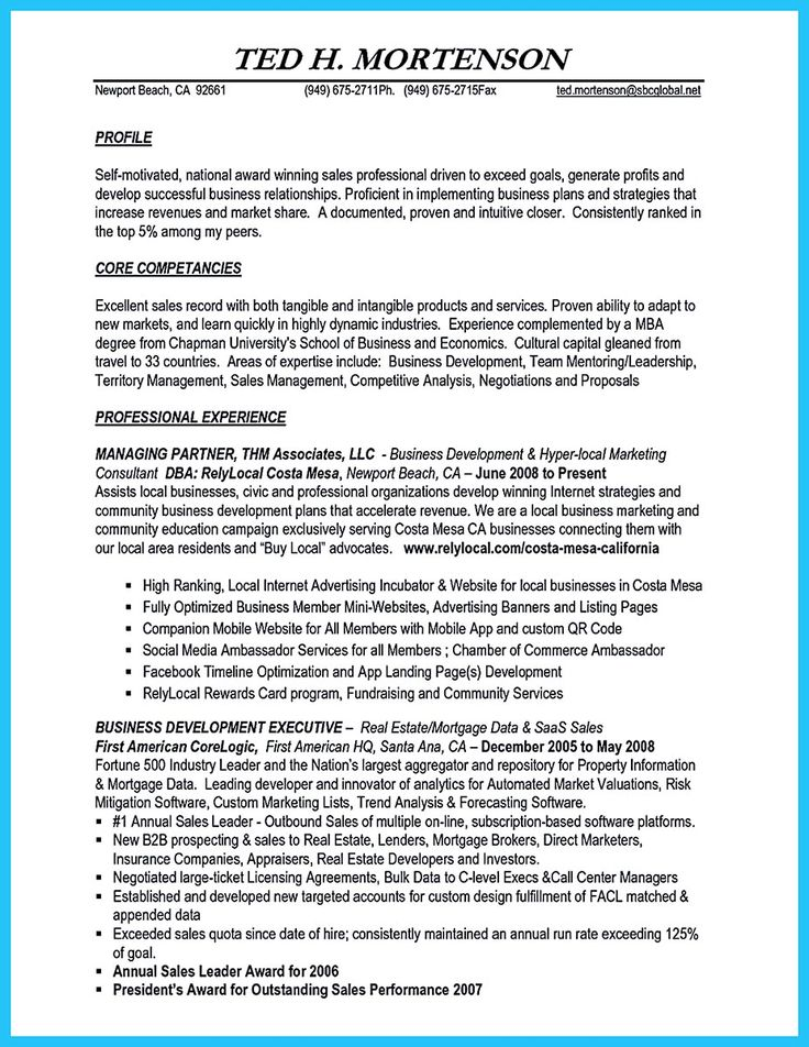 192 best resume template images on Pinterest Resume templates - business intelligence resume