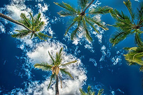 ТОП 10 парков Гавайских островов #Hawaii