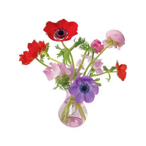 Primavera, flores, Tatuajes, Decoración del hogar, Window Decal, con tatuajes de pared, Anémona ('Flat Flores ventana calcomanías anémona rosa)