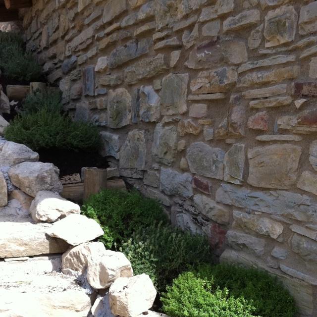 Tincana!!: Home, Giardini, Tincana