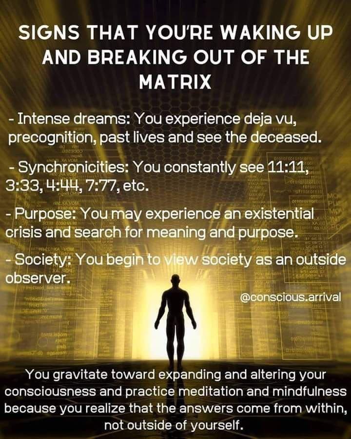 Pin By Sara Goessel On Awakened Life Free Mind Soul Quotes Spirit Guides